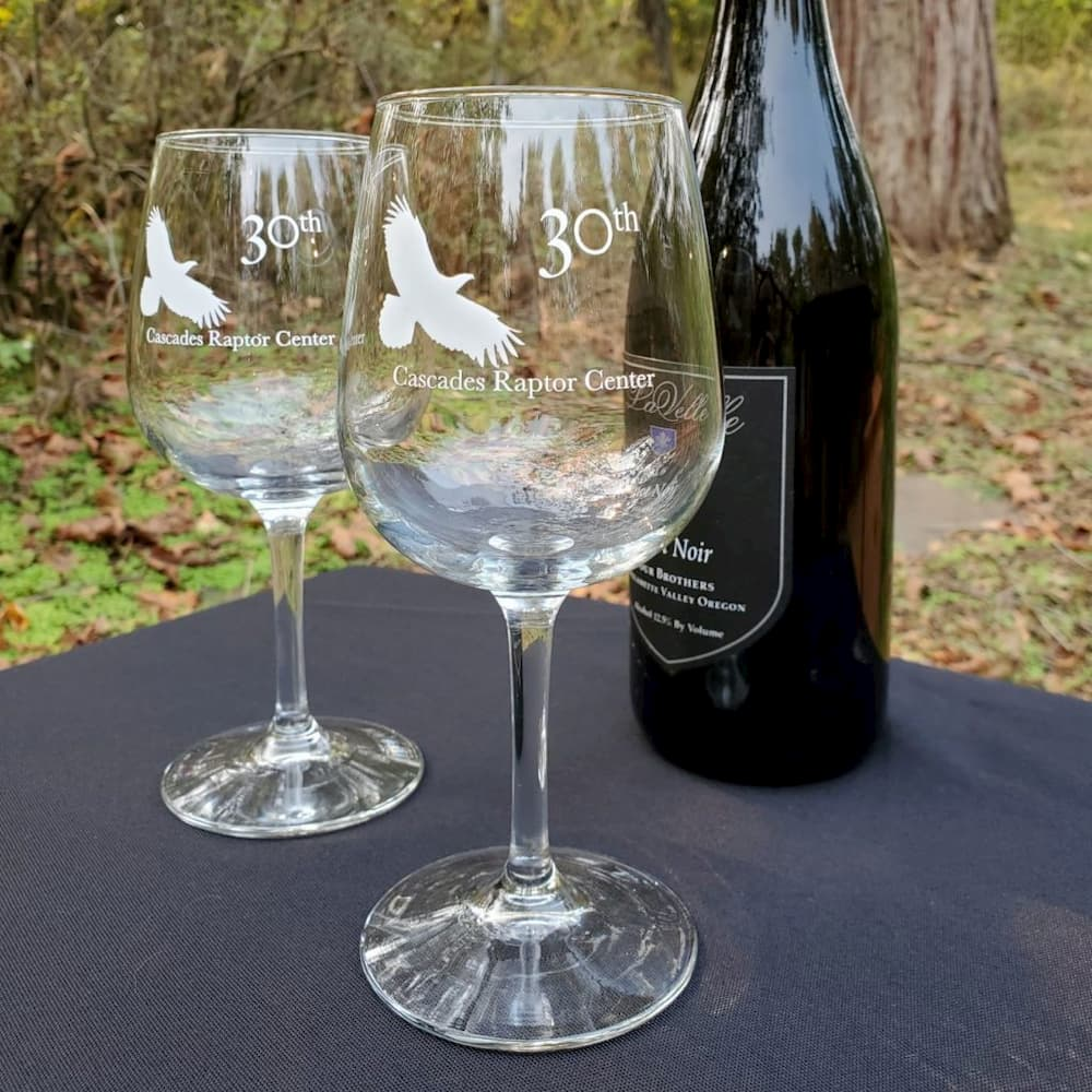 Wine Glasses (Pair)
